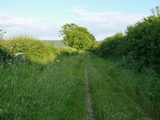 Bridleway south of Kenley