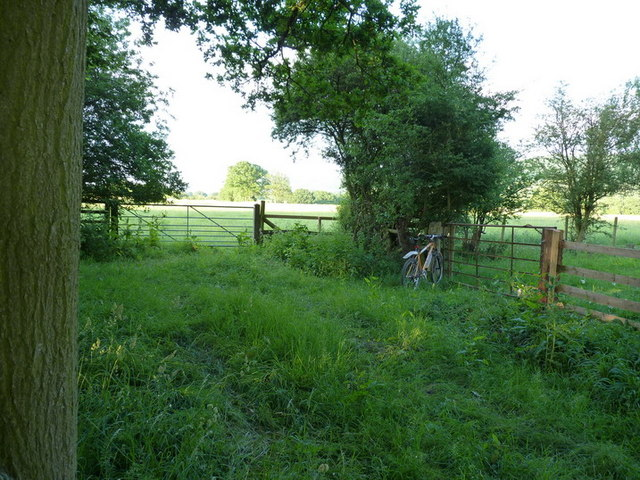 A bridleway and footpath junction