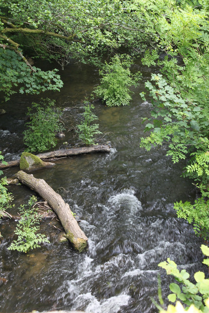 Tributary of River Wolf at Drown's Mill