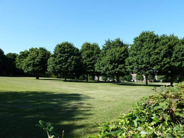Purbrook Rec on a glorious summer afternoon