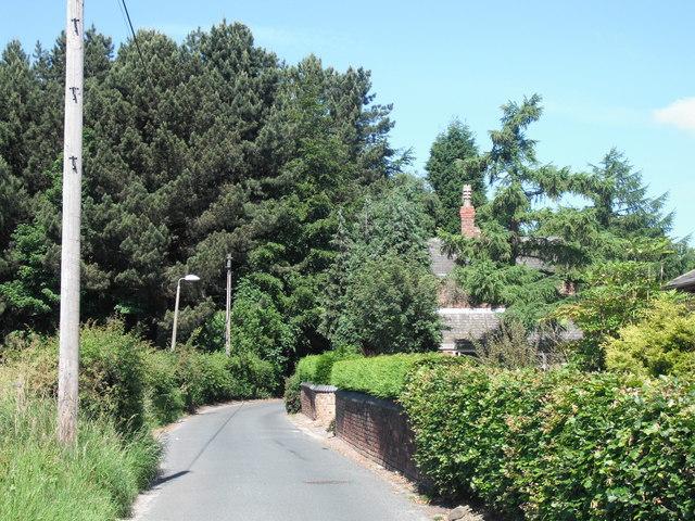 Sandy Lane, Holt Green
