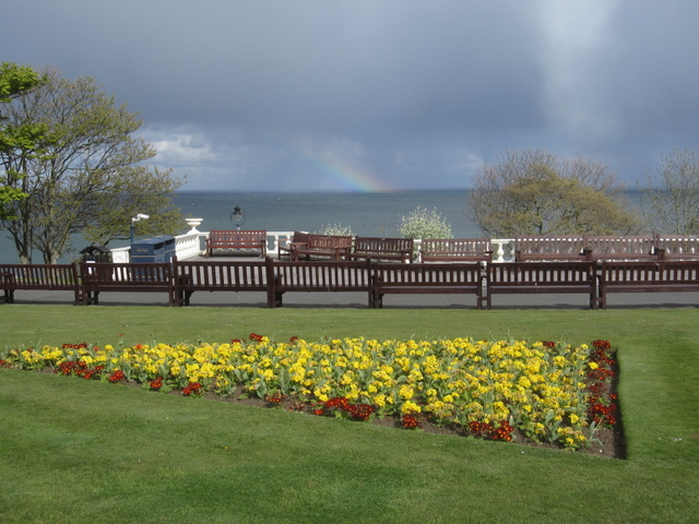 Flowers and a rainbow, Crescent Gardens