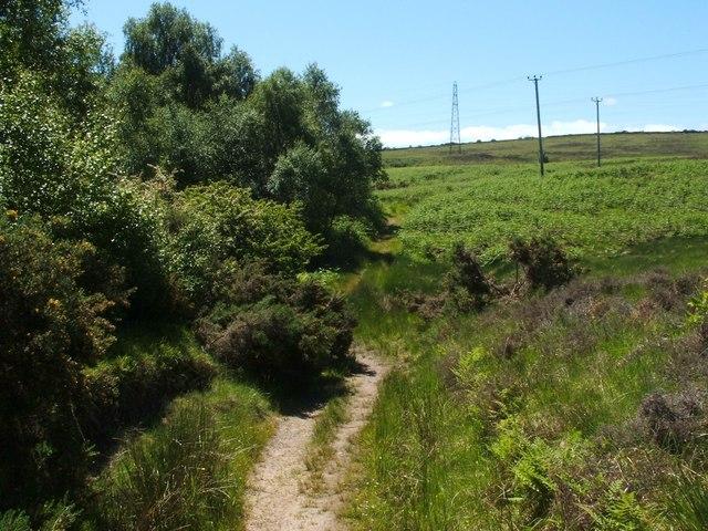 Footpath around Carman Reservoir