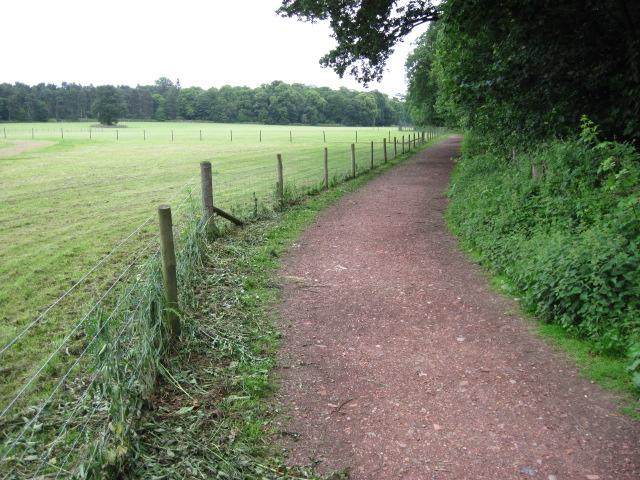 Footpath in Clumber Park
