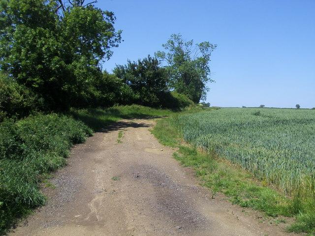 Footpath to Wicken
