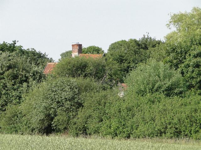 Bush Hill Farm, Cookley, Suffolk