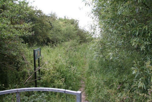 Path to the Windrush