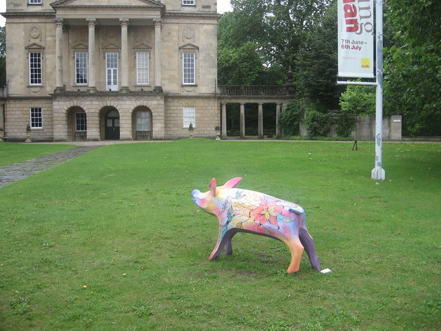 Pig and Museum