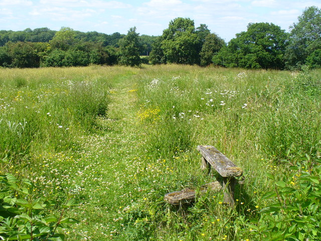 Meadow at Well