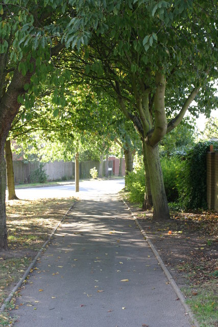 A path leading to Leyland Road