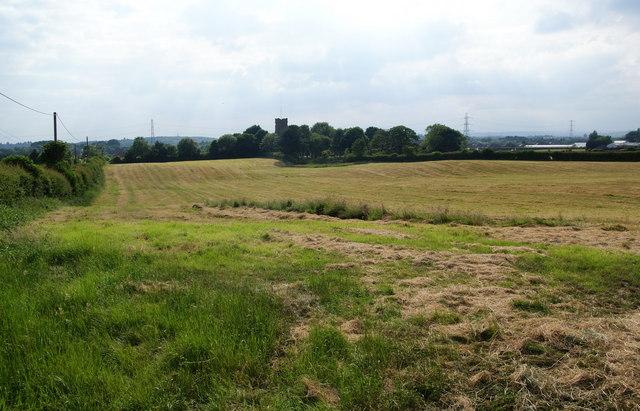 Harvested grass above St John's Thornham
