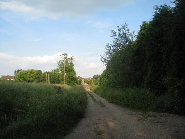 Lane to Scotton