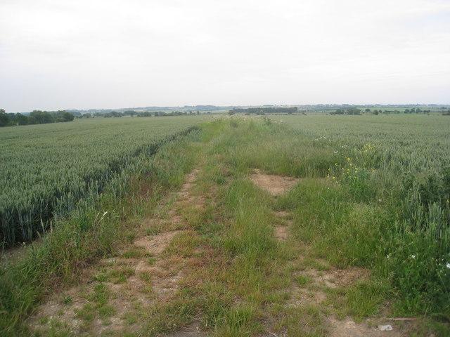 Farm track near Scotton