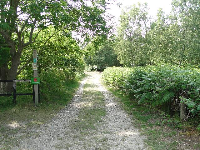 Footpath at Tinkers Walks