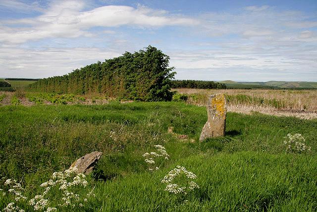 Moor Head Standing Stones