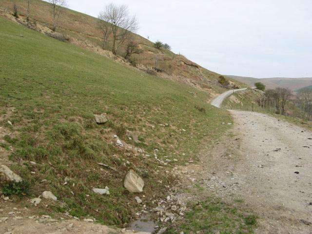 Track to Mynydd y Cemais