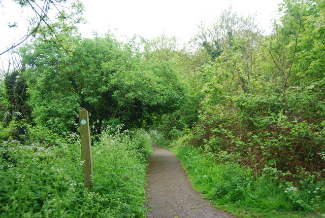 Capital Ring through Biggin Wood