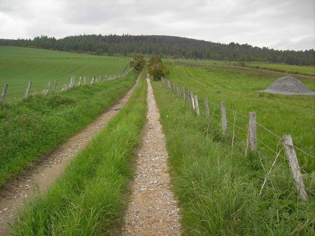 Track near Dufftown