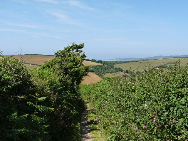 Looking down Pathdown Lane