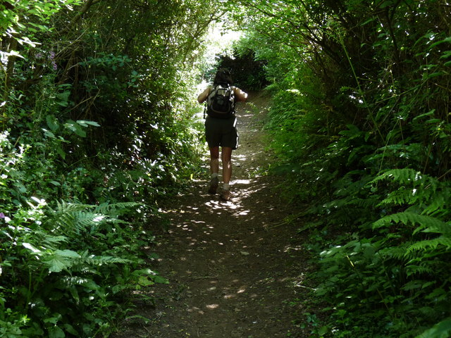 The final ascent up Pathdown lane