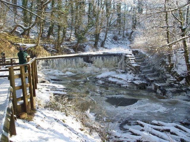 Drybones Weir and Fish Ladder. Winter