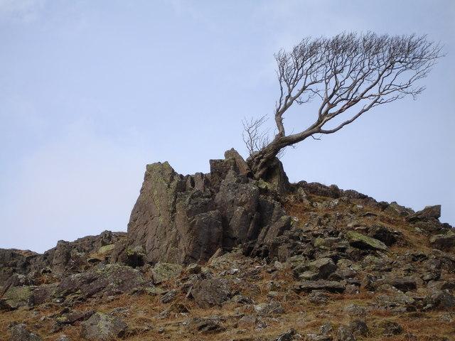 Rock Outcrop Easedale