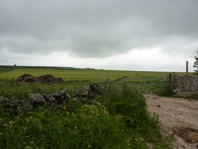 Footpath off Cardlemere Lane