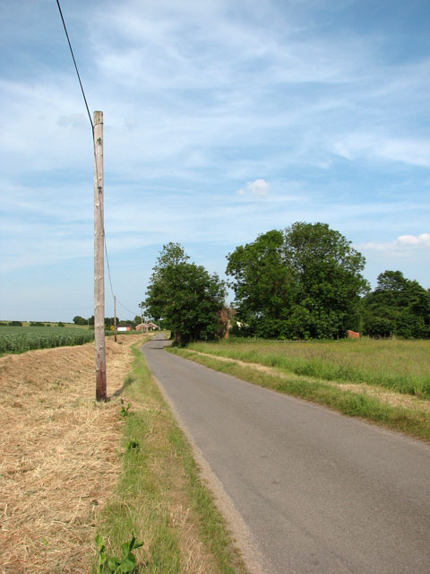 Telegraph poles beside Cookley Road