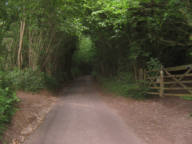 Gogway in Yockletts Banks Nature Reserve
