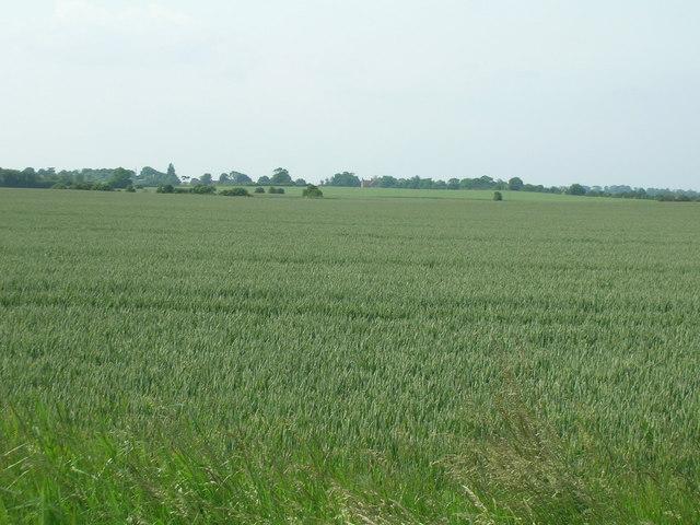 Farmland near Hedon