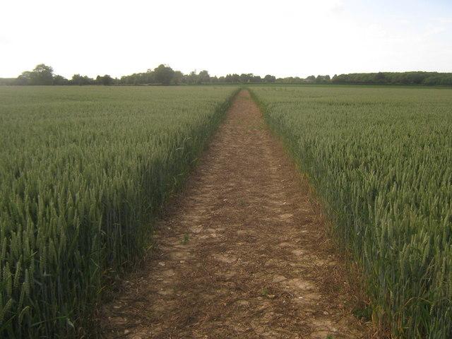 Footpath towards Stoneleigh House