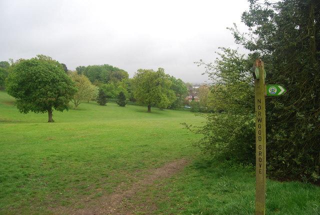 Capital Ring signpost, Norwood Grove