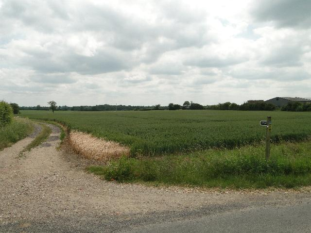 Bridleway following a farm track