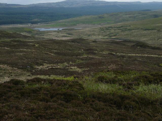View over hillside towards Loch Assapol