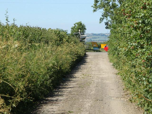 2010 : Nanny Hurn's Lane in the dry