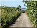 ST6058 : 2010 : Nanny Hurn's Lane in the dry by Maurice Pullin