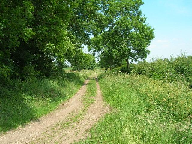 Farm track near North End Farm