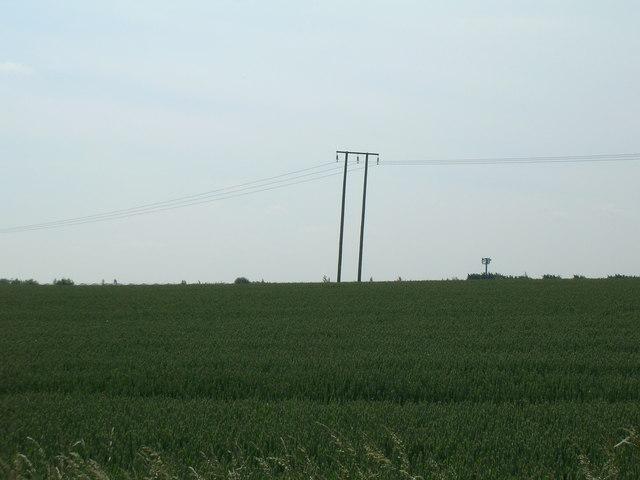 Farmland near Keyingham