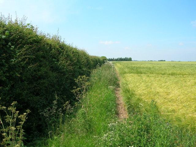 Footpath near North End Farm