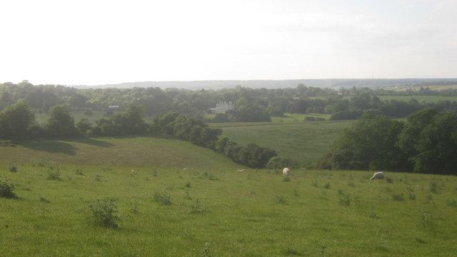 View from near Dane Farm