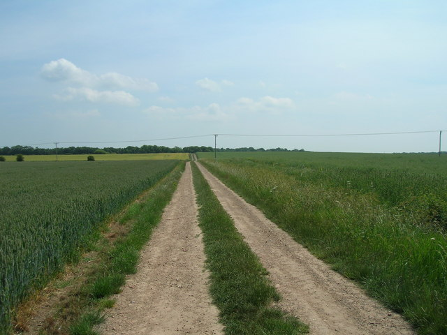 Farm track near Whinhill Farm