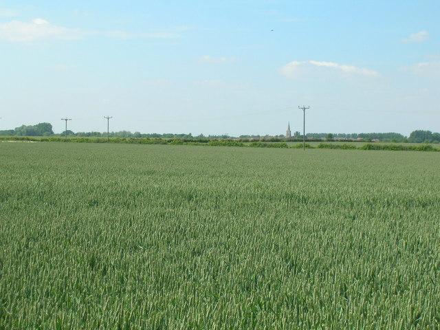 Farmland near Whinhill Farm