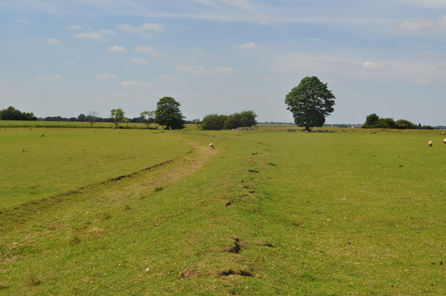 Stonea Iron Age Fort