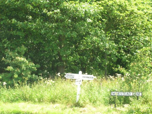 Woodland near Winestead Hall