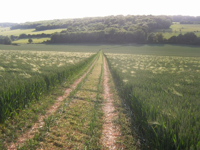 Bridleway to Duckpit Road