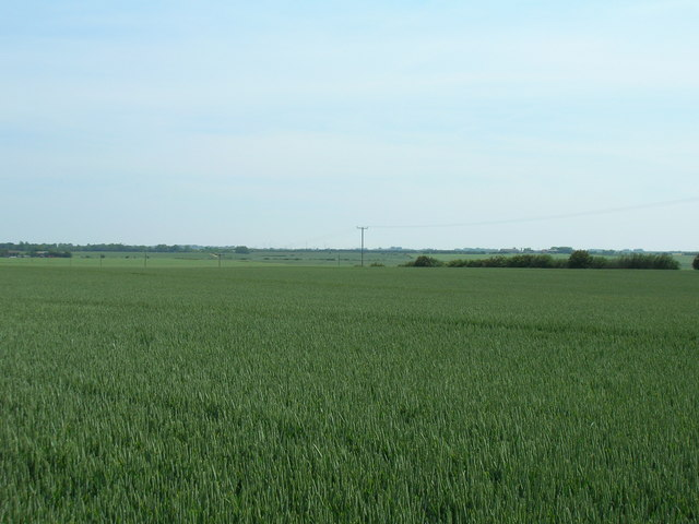 Farmland near Willow House Farm