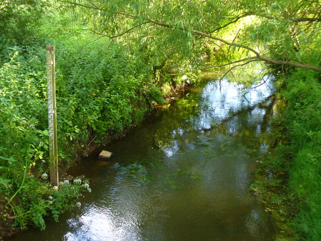 Hoe Stream, Mayford