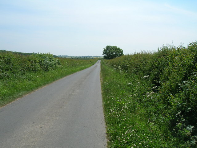 Arables Lane towards Winestead