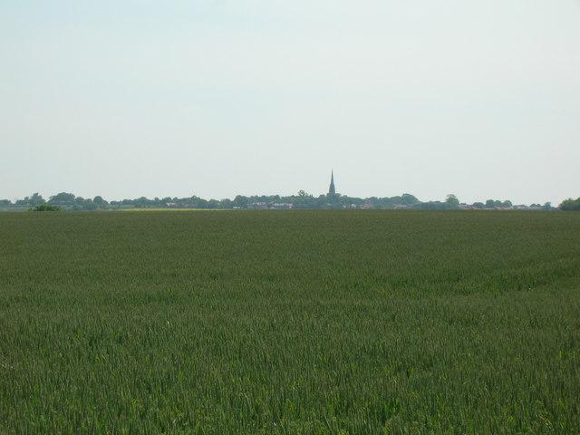 Farmland looking Patrington