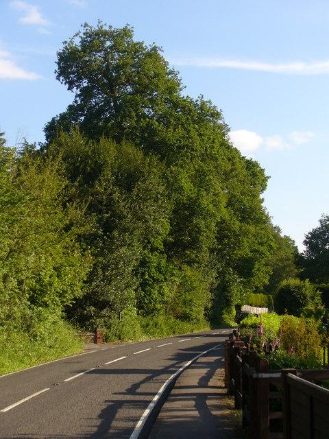 Guildford Road, Woking